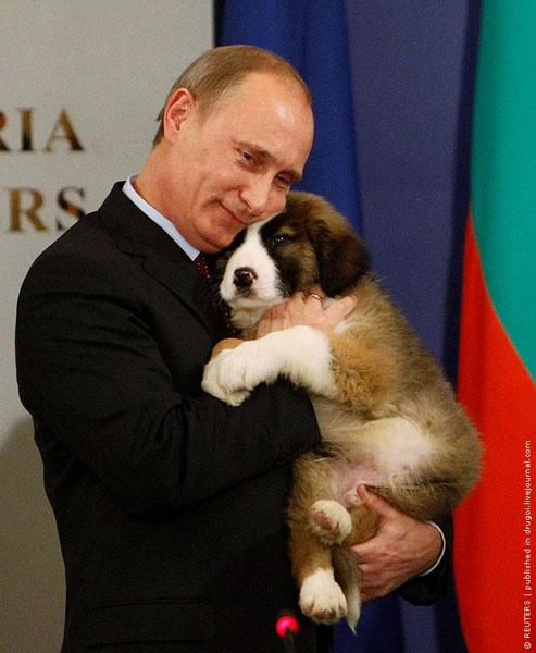 Путин и собака
