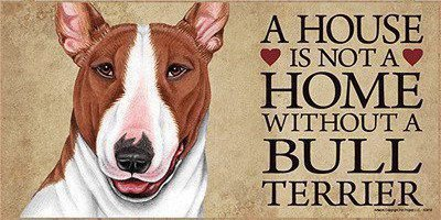 A house is not a home without bull terrier