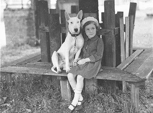 bull-and-girl-vintage