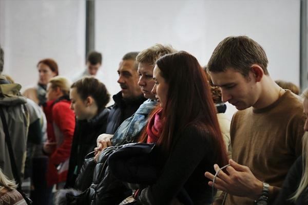 посетители выставки бультерьеров