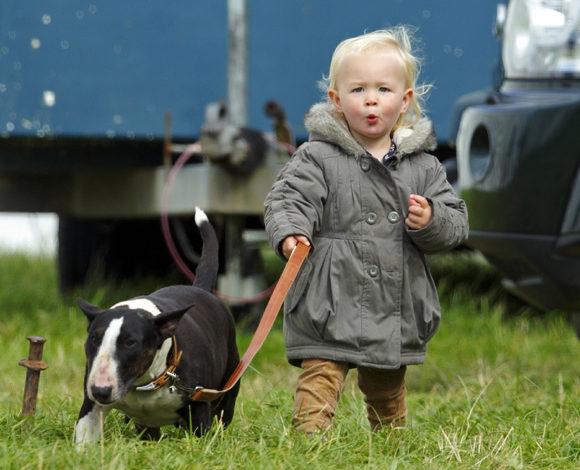 Дети и бультерьеры. 10 лучших фото.