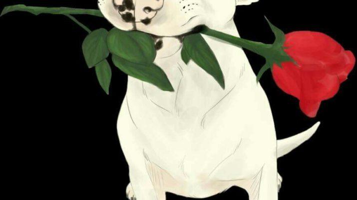 Bully-art-rose